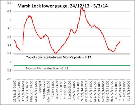 Marsh graph 1, Mar 3rd