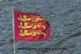 Molly Three Lions Flag