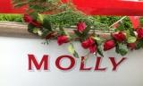 Molly Name & Decor